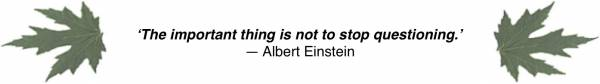 'The important thing is not to stop questioning.' —Albert Einstein